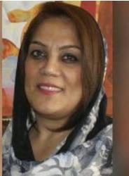 مریم محمدی، فعال حقوق